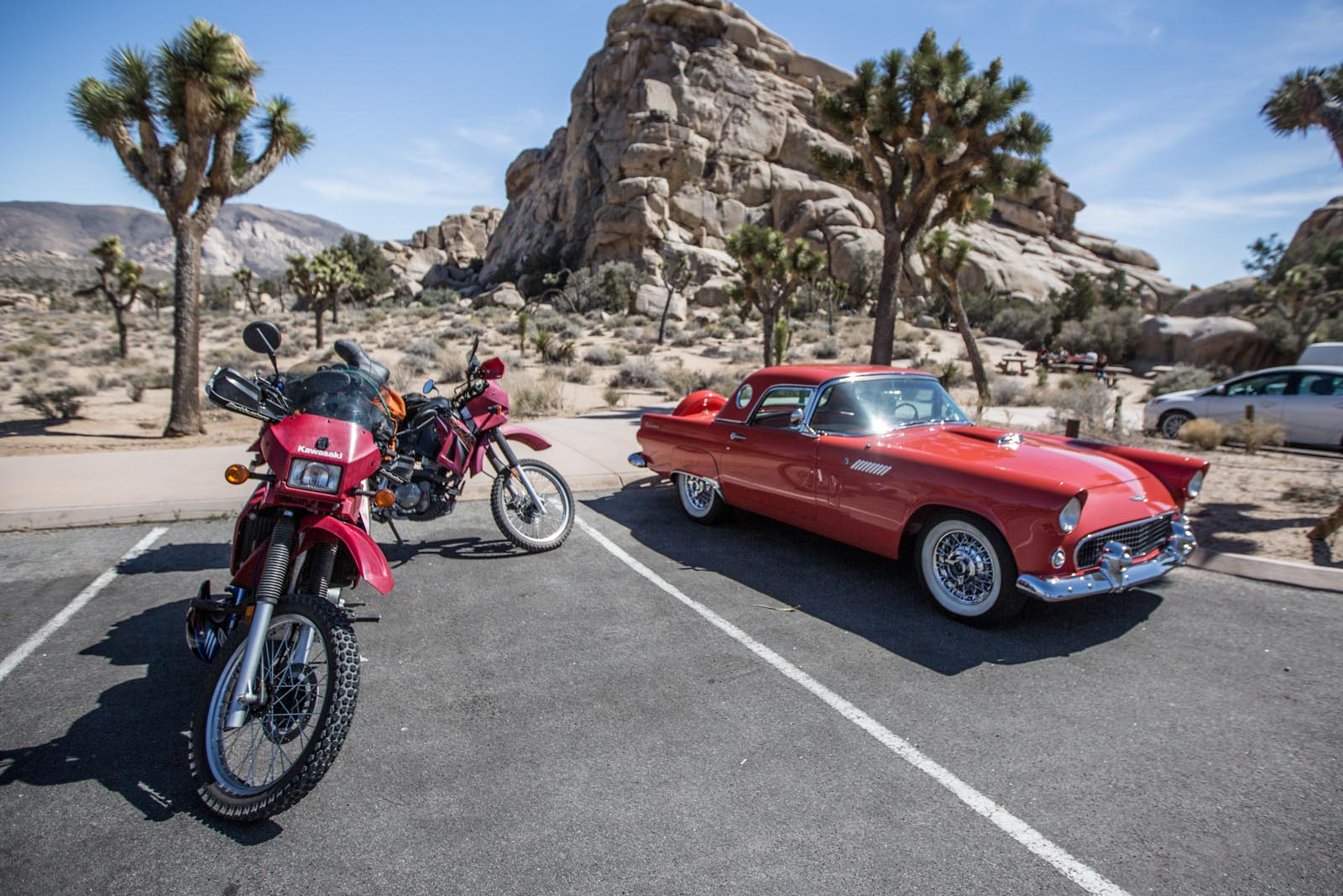 The thunderbird is kind of impressive, but our bikes obviously stole the show.