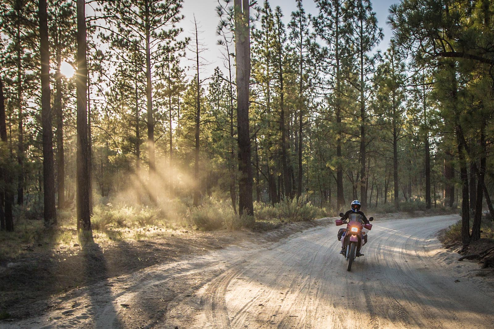 Just look how the sun rays capture that cloud of dust that now covers Becky and everything on her bike.