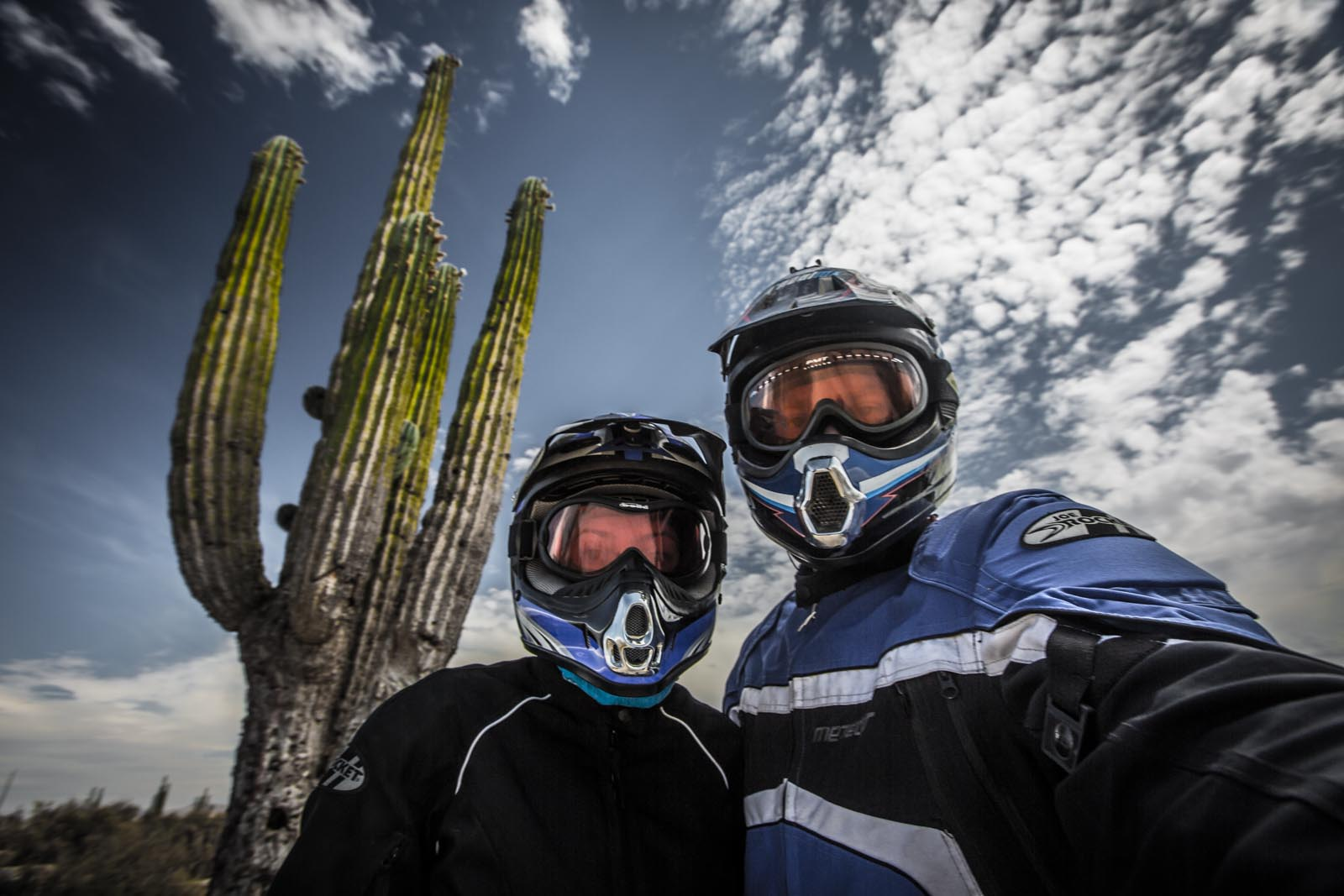 The air in the desert after the rain is so intensely clean and fragrant that we had to keep our helmets and masks on for this cactus shot.