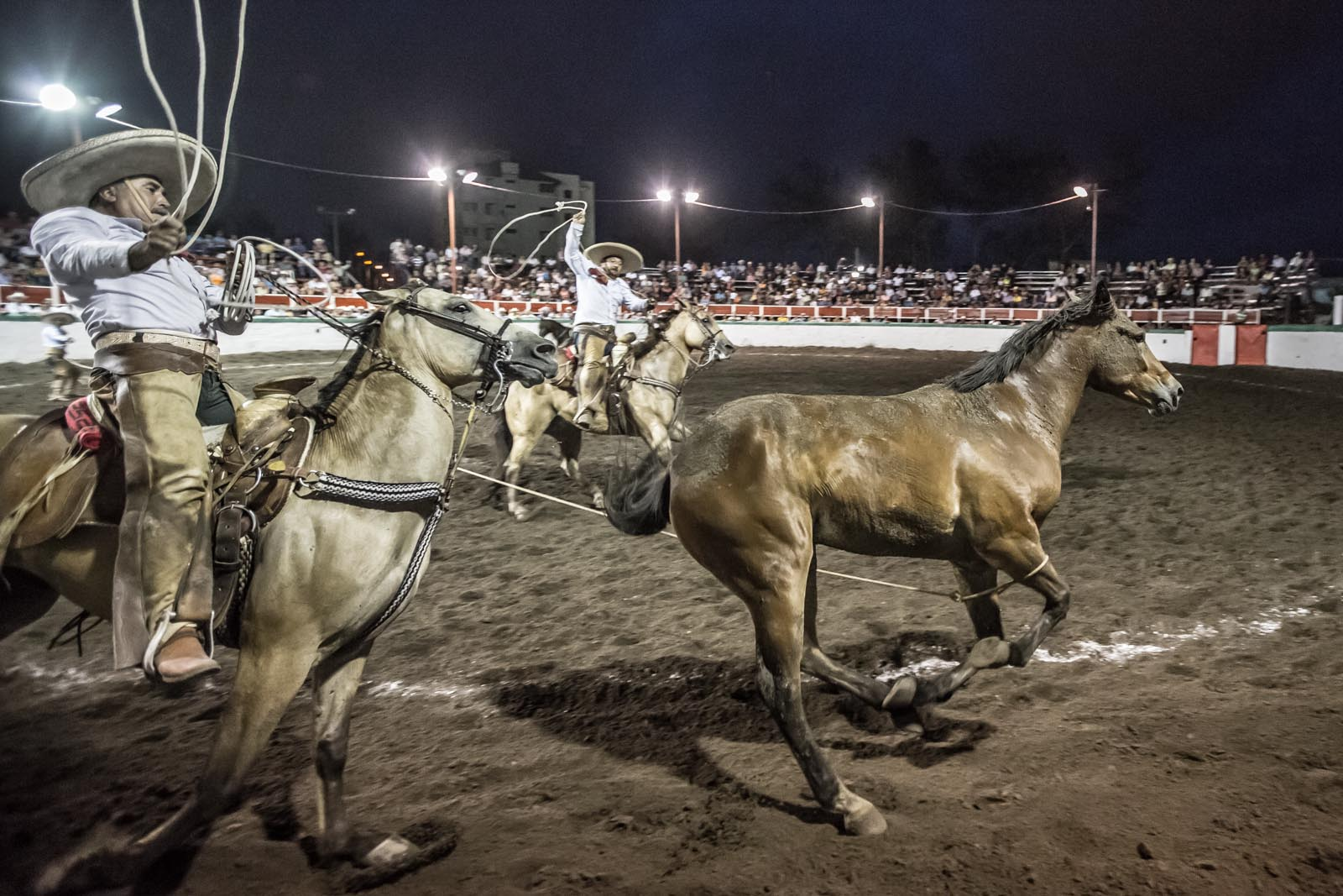 Gotcha! Down in the trenches at a local Rodeo in Veracruz. What an amazing experience.