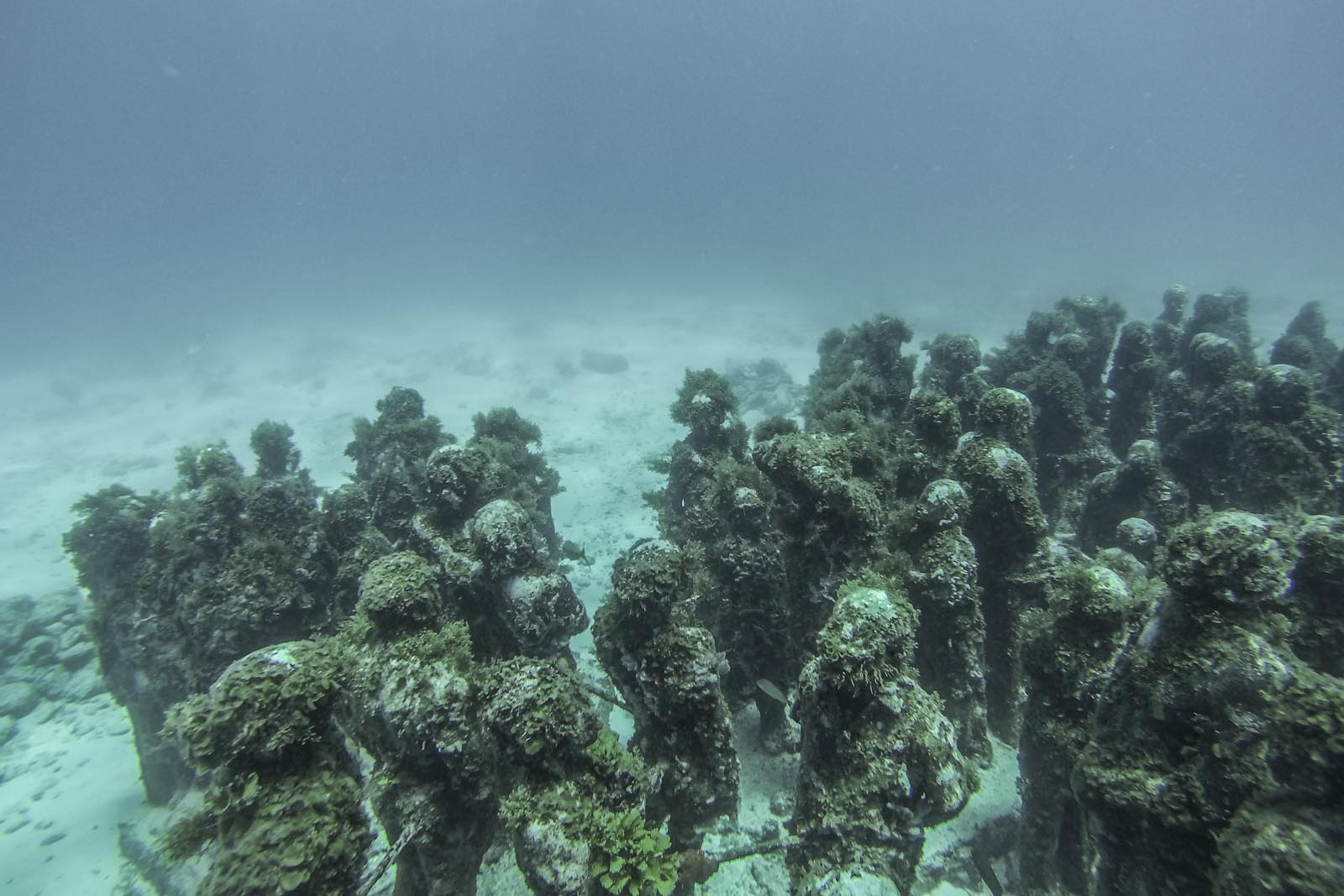 Underwater statues made of special pH neutral cement for the museum.
